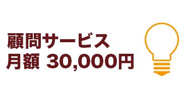 企業顧問サービスは月額3万円です